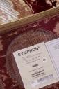 Symphony 0009-Q16
