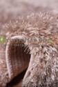 Shaggy Lama 1039-33051 дорожка